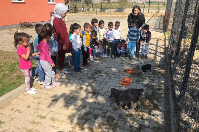 Bingöl'de öğrenciler hayvan barınağını gezdi