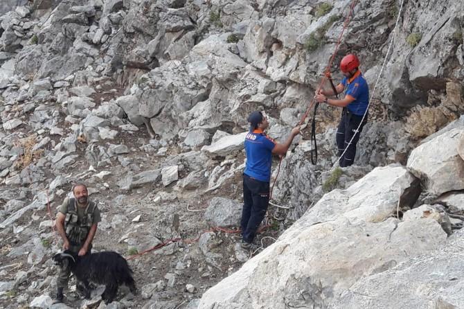 Sason'da keçi kurtarma operasyonu