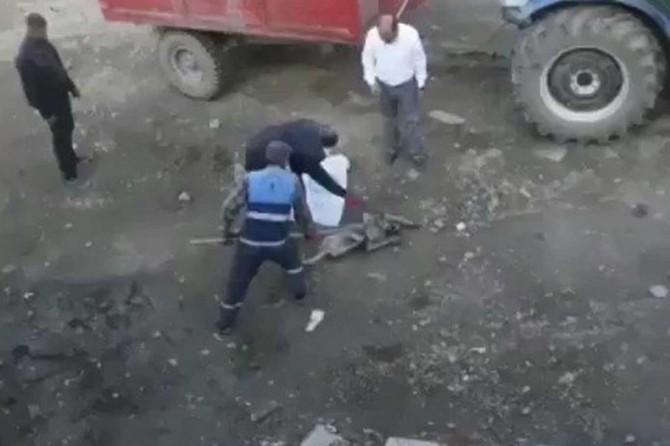 Muş'ta köpeğe eziyete suç duyurusu