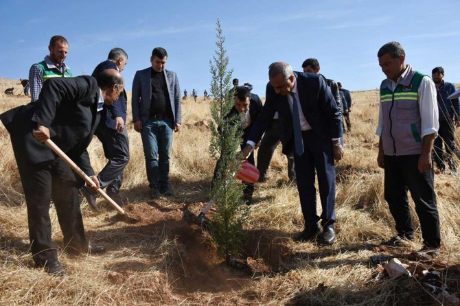 Hilvan Belediyesi Geleceğe Nefes için fidan dikti