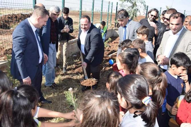 Viranşehir'de 5 bin fidan toprakla buluşturuldu