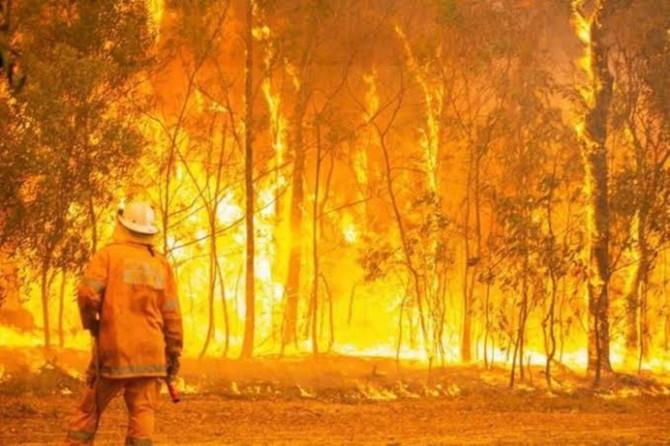 Avustralya'daki orman yangınları kontrol edilemiyor