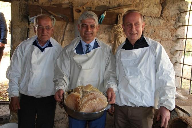 Dünya üçüncülüğü tescillenen Bitlis balının hasadı sona erdi