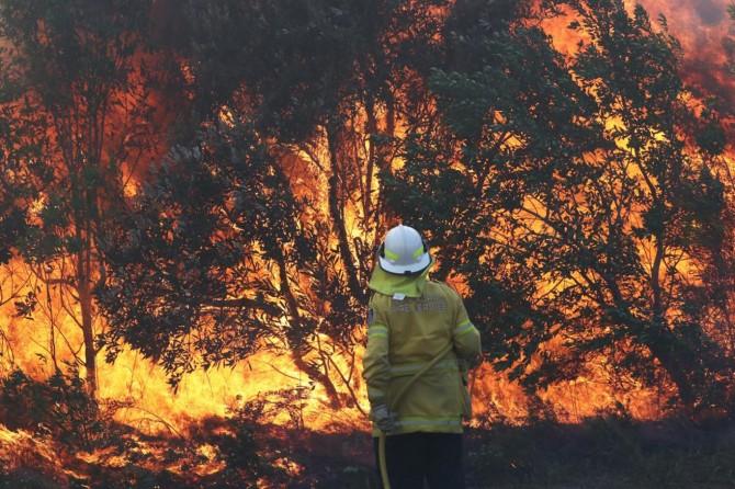 Avustralya'da orman yangınları 10 gündür sürüyor