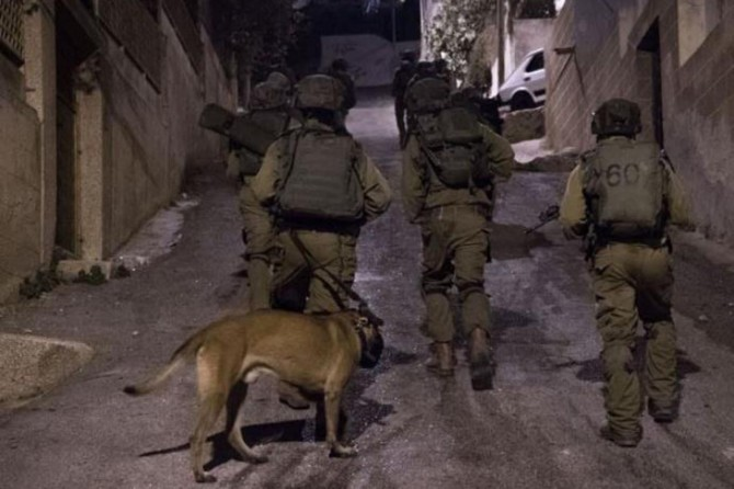 Zionist gangs kidnap 30 Palestinians in W. Bank and Jerusalem