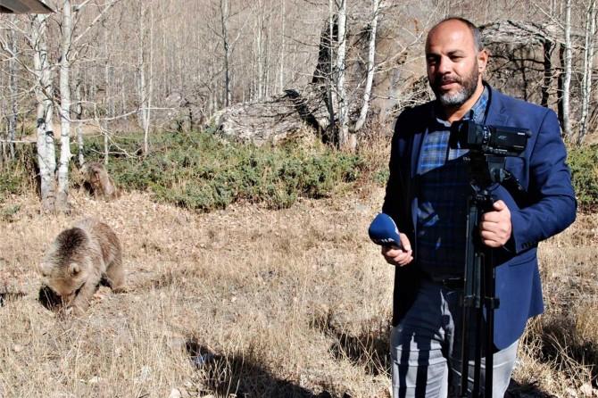 Nemrut Krater Gölünde muhabire ayı saldırısı kamerada