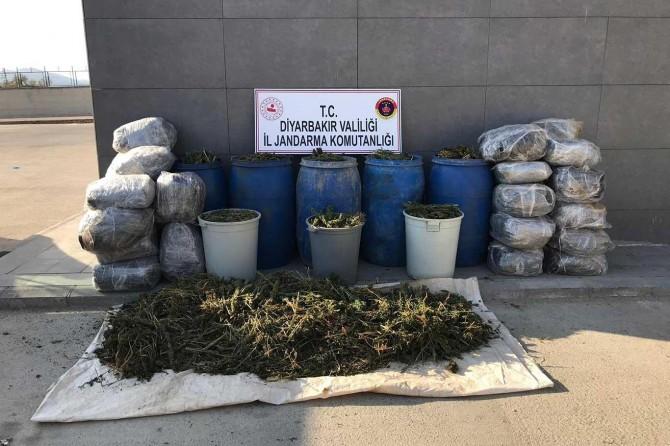 Lice ve Hani'de PKK operasyonunda 700 kilogram esrar ele geçirildi