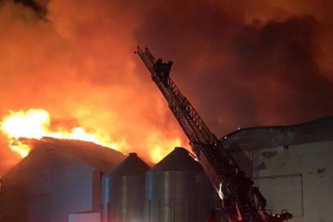 Hindistan'da yangın: 43 ölü