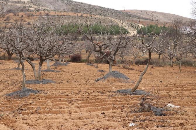 Son 9 yılın en kurak kasım ayı geride kaldı
