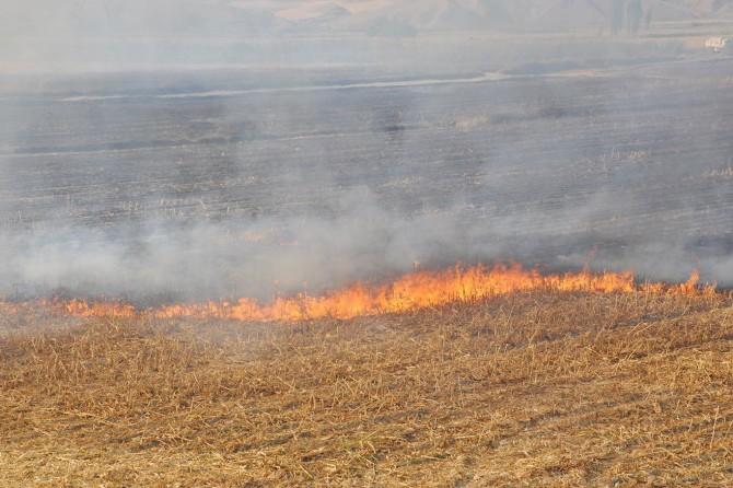 Anız yangınlarından dolayı toprak özelliğini yitirdi