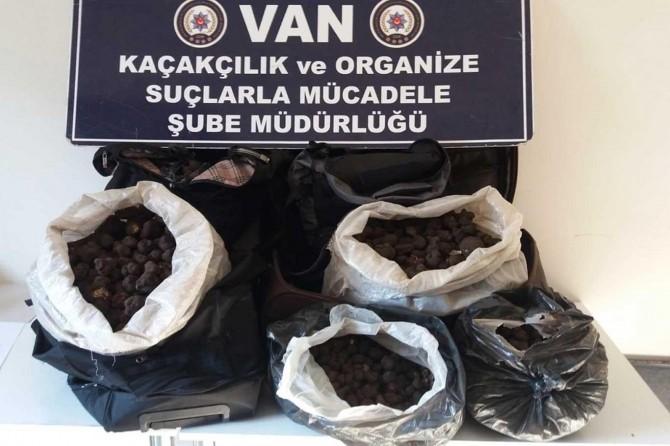 Van'da valizlerde trüf mantarı ele geçirildi