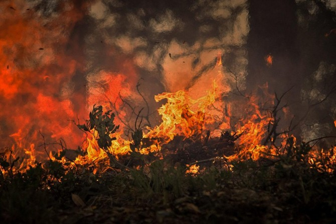 Avustralya'da orman yangınları söndürülemiyor