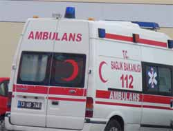 Bitlis Hizan'da Ağaçtan Düşen Şahıs Ağır Yaralandı