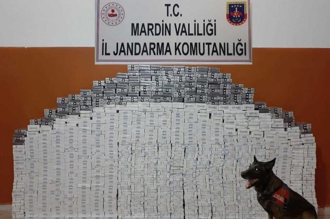 Mardin'de 8 bin 470 paket gümrük kaçağı sigara ele geçirildi
