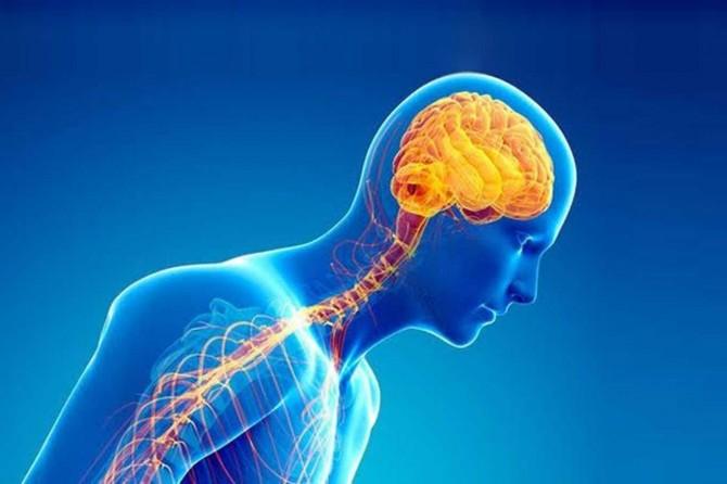 Uzmanlar, Parkinson'da erken tanının yaşam kalitesi üzerindeki önemine dikkat çekti