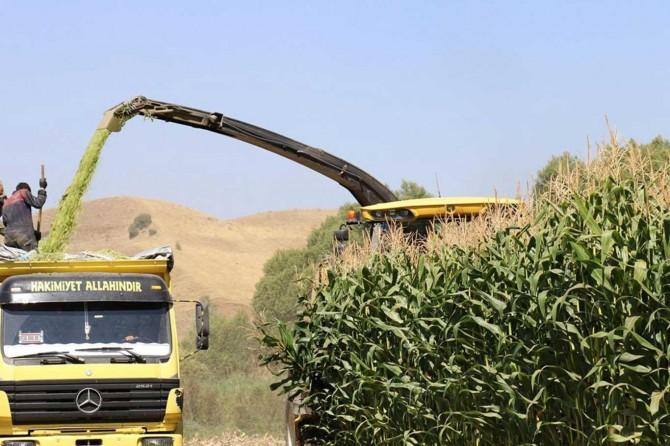 Elazığ ve Malatya'daki üreticilerin tarımsal destekleri bugün ödenecek