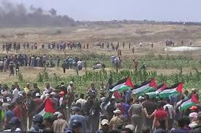 Zionist gangs injures dozen of Gazan protesting the Deal of the Century