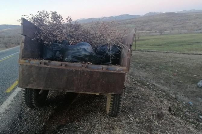 Diyarbakır'da 250 kilogram esrar ele geçirildi