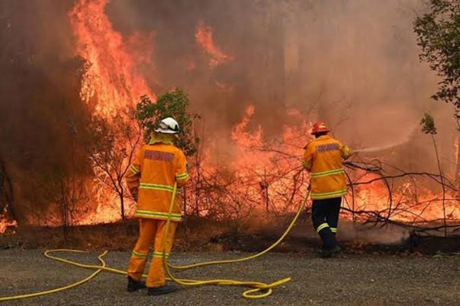Yangınlarla mücadele edemeyen Avustralya'da olağanüstü hâl ilan edildi