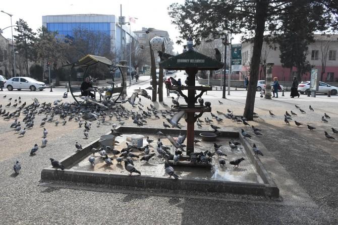 """Şahinbey Belediye Başkanı Tahmazoğlu: """"Sokak hayvanları bizlere emanet"""""""