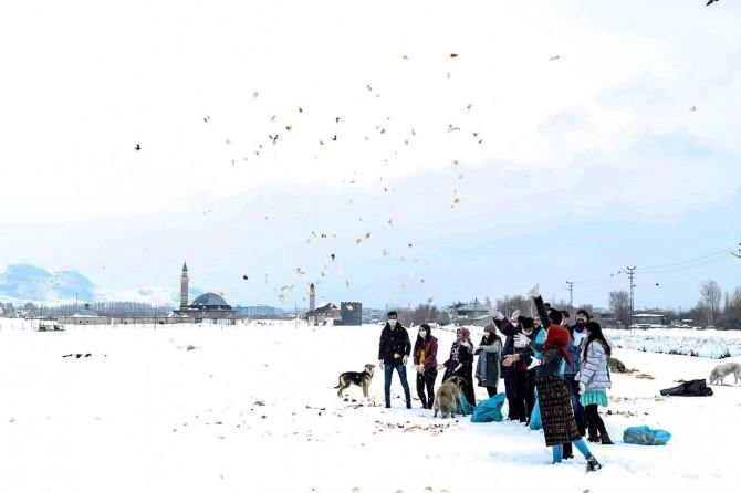 Van İpekyolu Belediyesi sokak hayvanları için doğaya yem bıraktı