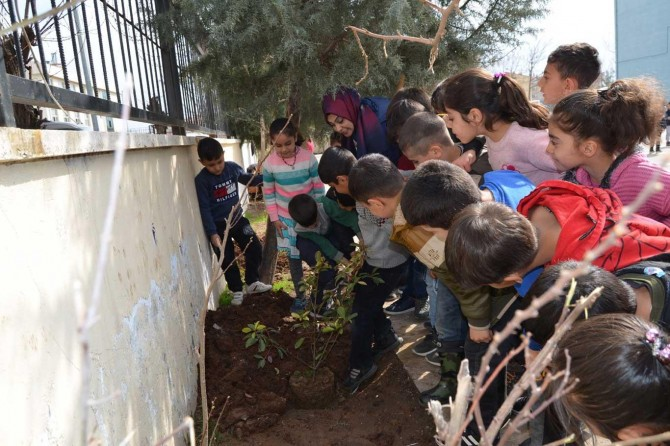 Bağlar Belediyesi okullarda yeşil alan seferberliği başlattı