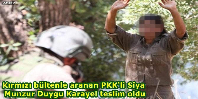 Kırmızı bültenle aranan PKK'li -Siya Munzur- Duygu Karayel teslim oldu
