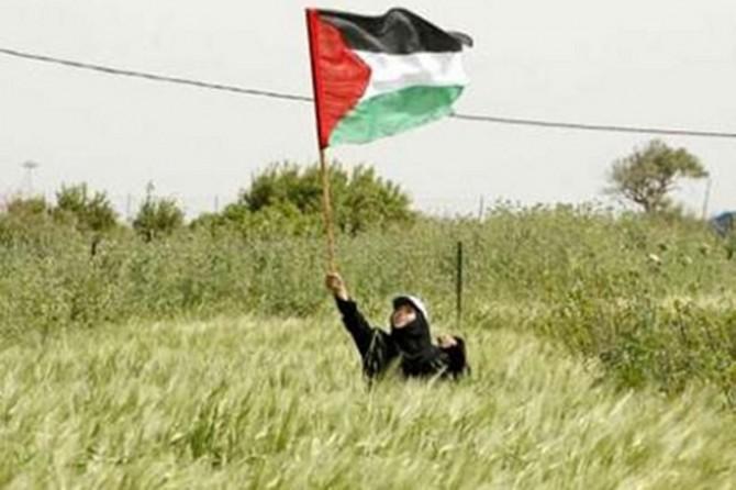 Filistin'de 30 Mart tarihi 'Toprak Günü' olarak ihya edilmektedir