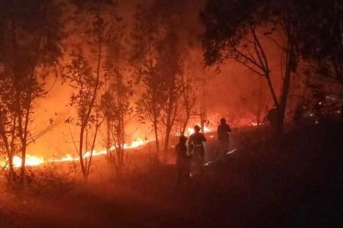 Li Çînê şewata daristanê: 19 mirî