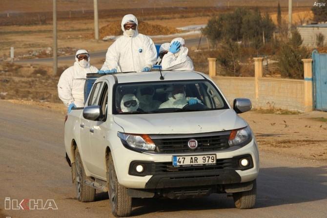 Coronavirus nedeniyle Derik'e bağlı Kovalı Mahallesi ile Tepecik Mezrası karantinaya alındı