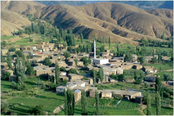 Bitlis'in Arıdağ Köyü Coronavirus salgını nedeniyle karantinaya alındı