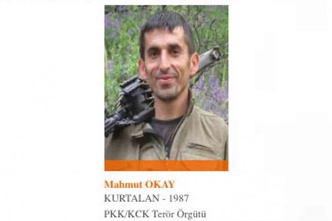 İçişleri Bakanlığı: 1 milyon TL ödülle aranan PKK'li Mahmut Okay yakalandı