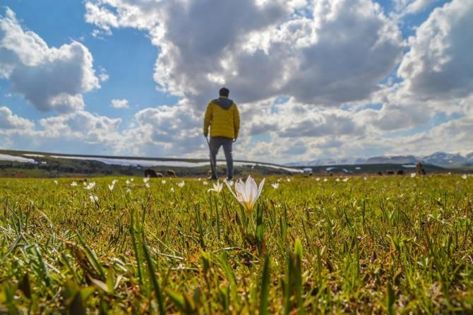 Baharın müjdecisi kardelenler doğayı süsledi