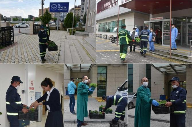 Şahinbey Belediyesi Gaziantep'te vatandaşlara reyhan çiçeği dağıtıldı