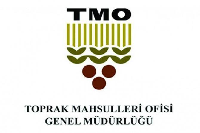 TMO: Fındık alım fiyatları çok sayıda faktör dikkate alınarak belirleniyor