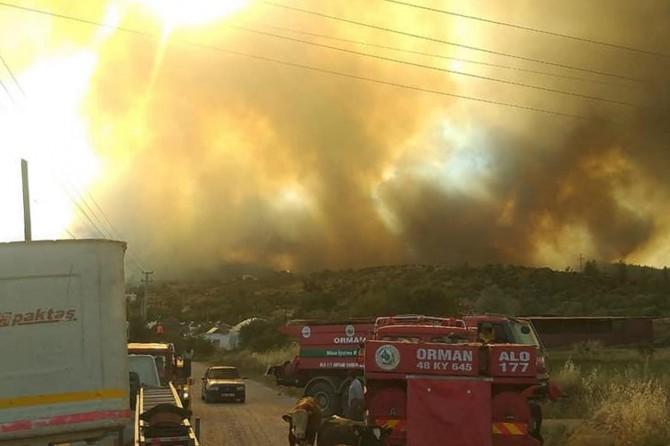 Muğla'da ormanlık alanda yangın çıktı