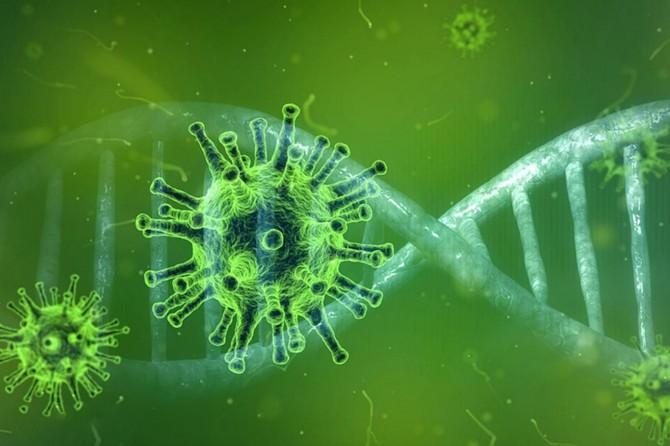 Global death toll from coronavirus reaches 334,890