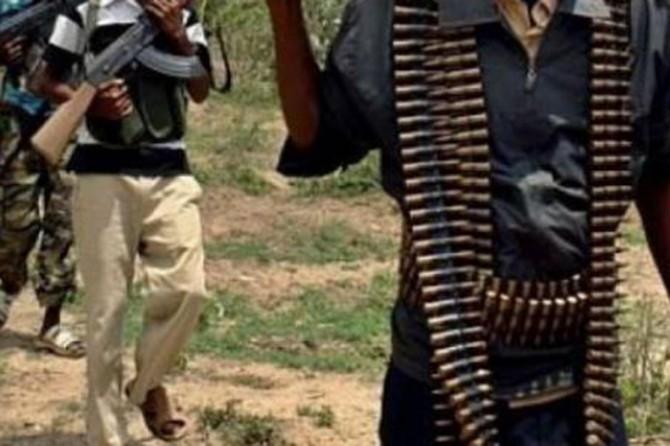 Nijerya ordusu 35 Boko Haram mensubunu öldürdü