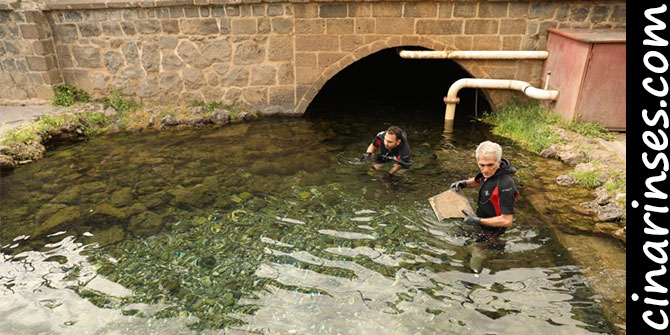 Diyarbakır Sur'daki Tarihi Anzele Suyu Atıklardan Temizlendi
