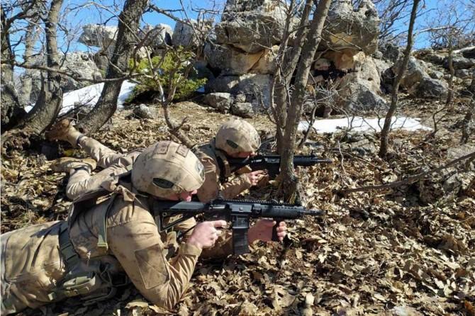 Pervari'de 2 PKK'li öldürüldü