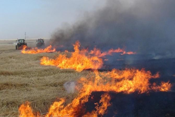 Adana Valiliğinden çiftçilere anız yangını uyarısı