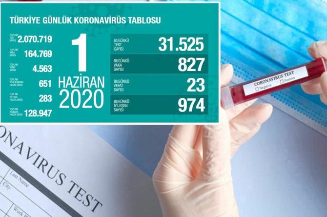 Türkiye'de Covid-19'dan 23 kişi daha hayatını kaybetti, 827 yeni tanı kondu