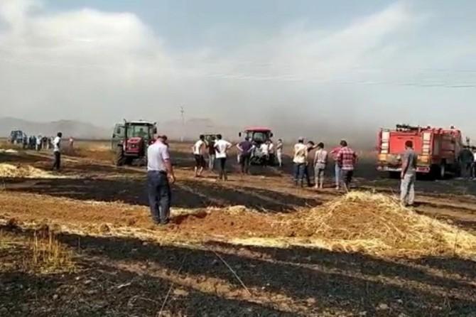 Kızıltepe'de çıkan yangında 600 dönüm buğday kül oldu