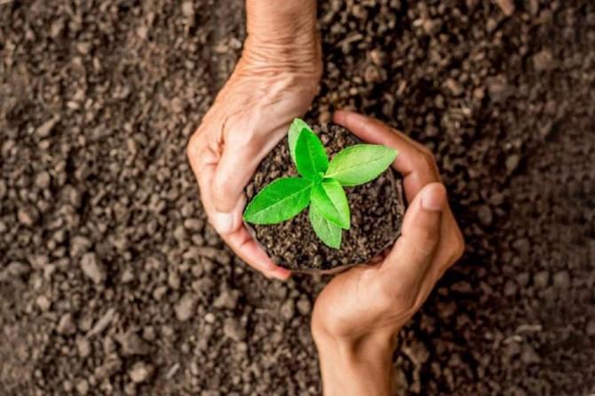 18 yılda 4,7 milyar fidanı toprakla buluşturuldu