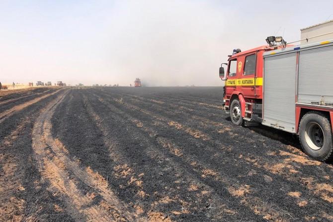 Buğday tarlasında çıkan yangında 200 dönüm kül oldu