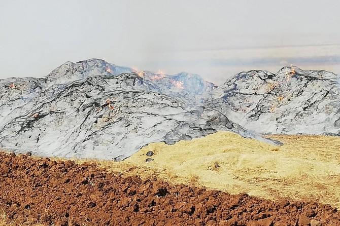 Nusaybin'den 78 ton saman yandı