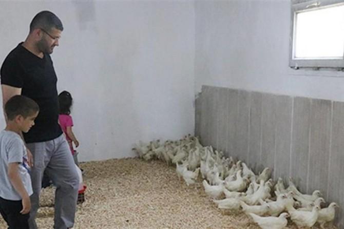 Kümesi yanan üreticiye bin 200 tavuk hediye edildi