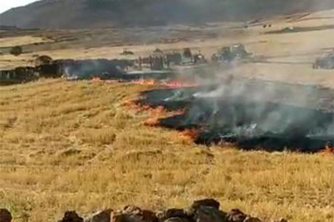 Çınar'da çıkan yangında yaklaşık 30 bin dönüm ekili arazi ve mera yandı
