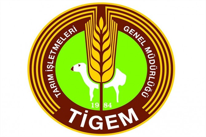 Ceylanpınar TİGEM'de çalışan bazı işçilerde Covit-19 tespit edildi