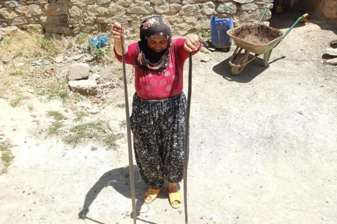 Maden'de metruk ahırlarda çıkan 2 metre boyundaki yılanlar köylüleri korkutuyor
